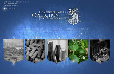 ds-collection